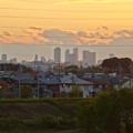 写真: 吉根橋から見た、夕暮れ時の名駅ビル群 - 1