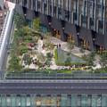 写真: セントラルタワーズ15階から見た景色 - 2:大名古屋ビルヂング(テラススペース)