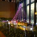 ミッドランドスクエアのクリスマス・イルミネーション 2016 No - 16