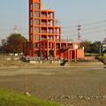 写真: 水抜きした落合公園・落合池 - 9