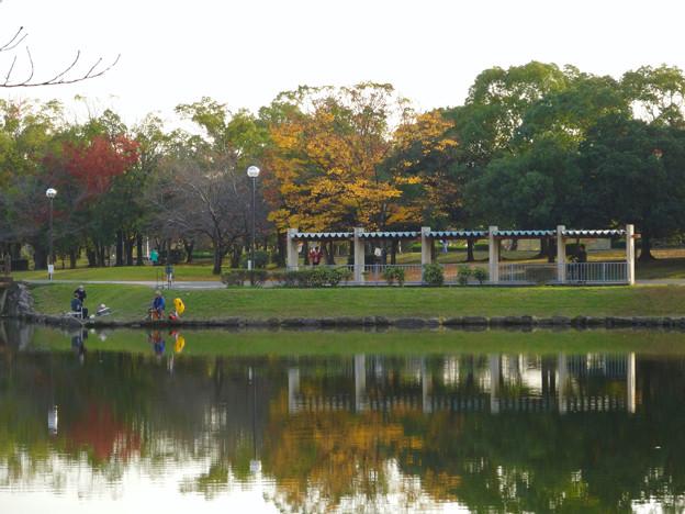 落合公園の紅葉 - 35