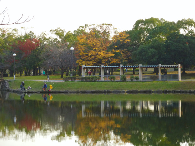 写真: 落合公園の紅葉 - 35