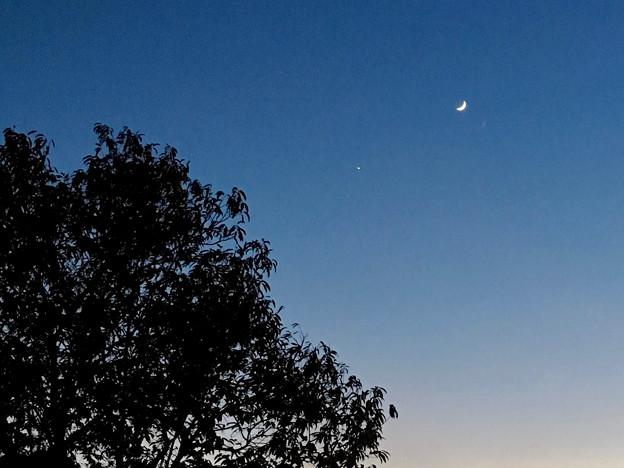 iPhoneで撮影した、三日月と並んで輝く「宵の明星」(金星)