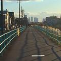 写真: 八田川沿いから見た名駅ビル群 - 9