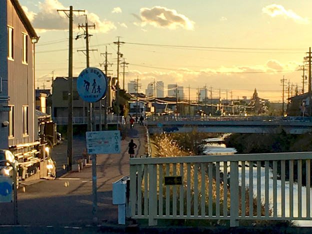 写真: 八田川沿いから見た名駅ビル群 - 13