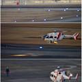 写真: 県営名古屋空港に着陸するヘリコプター - 8