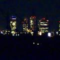 写真: 大池緑地公園から見た、夜の名駅ビル群 - 3