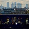 写真: 大池緑地公園から見た名駅ビル群(昼と夜)- 1