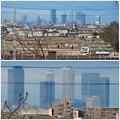 大池緑地公園から見た名駅ビル群 - 6