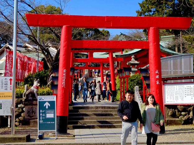大勢の人で賑わう、春めいた日の犬山城下町 - 7(三光稲荷神社前)