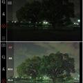 写真: 多機能写真・動画撮影&編集アプリ「Musemage」:HDR >夜間モードで撮影 - 3(モード有効・無効比較)
