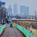 写真: 八田川沿いから見えた名駅ビル群 - 9