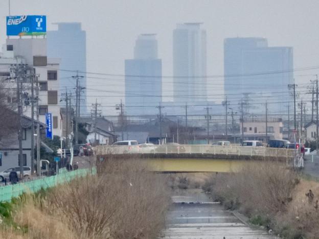八田川沿いから見えた名駅ビル群 - 10