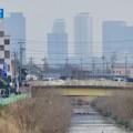 写真: 八田川沿いから見えた名駅ビル群 - 10