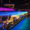 写真: 東京ドームシティ イルミ 2