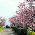 赤坂泉公園
