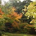 お気に入りの場所にも秋が来た!