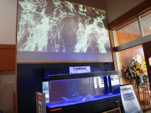 写真: 滝見の湯リニューアル 玄関