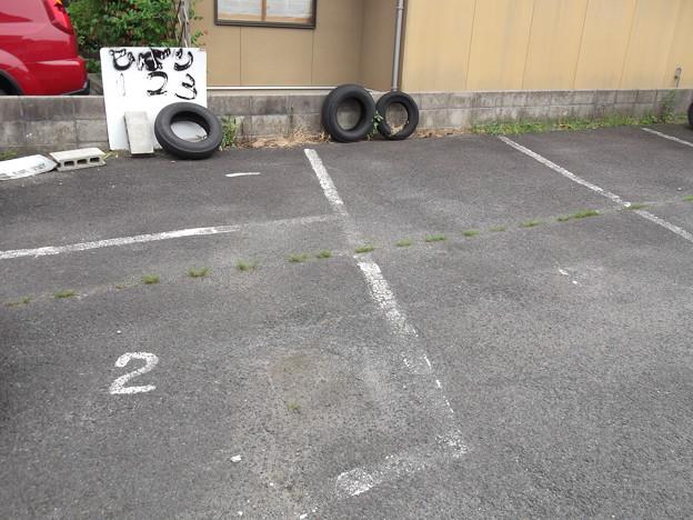 ひばり2012.05 (04)
