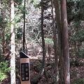 写真: 多田銀山