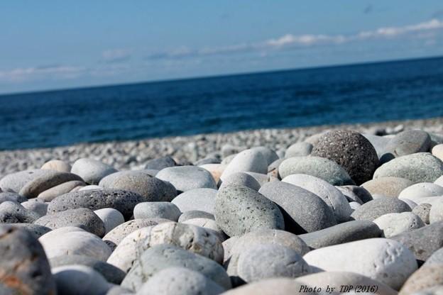 ゴロタ石サーフ