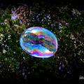 Bubble.......