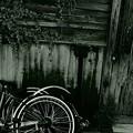 片輪車......