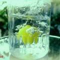 素もぐりレモン........