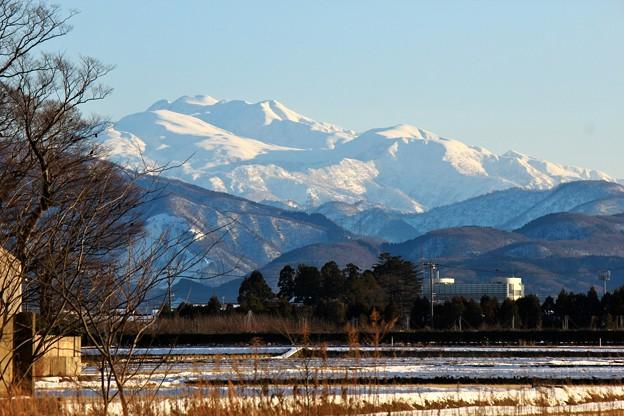 写真: 冬晴れの日に