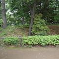 写真: 多摩川台古墳群8号墳
