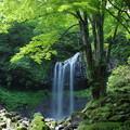 写真: マックラ滝