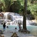写真: クアンシーの滝で泳ぐ