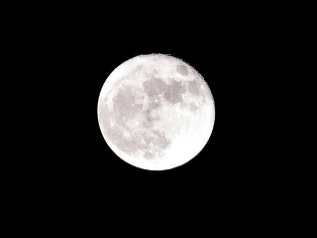 月・MOON