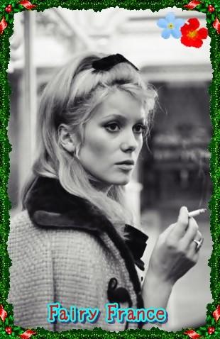 French Fairy Catherine Deneuve(29)