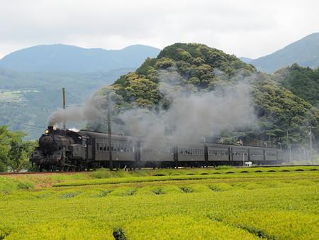 C10急行かわね路 大井川鐵道家山~抜里01