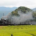 Photos: C10急行かわね路 大井川鐵道家山~抜里01