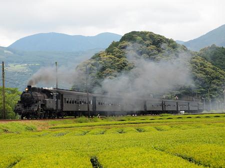 C10急行かわね路 大井川鐵道家山~抜里03