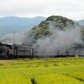 Photos: C10急行かわね路 大井川鐵道家山~抜里03