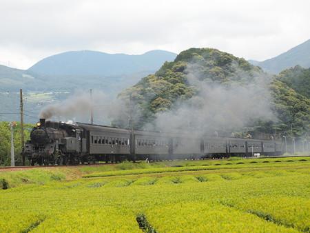 C10急行かわね路 大井川鐵道家山~抜里04