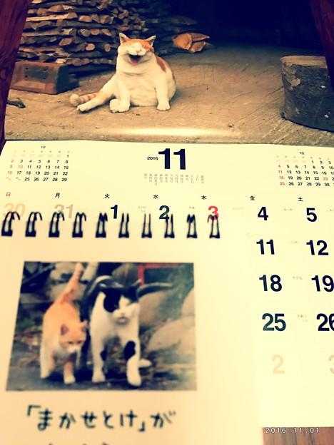もう11月merry Xmas!あと2か月