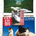 写真: 2017カレンダーは3つも部屋に飾る!元日