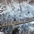 Photos: 氷柱