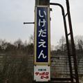 Photos: 19onuma_20ikeda_44