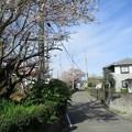 Photos: gaku_04