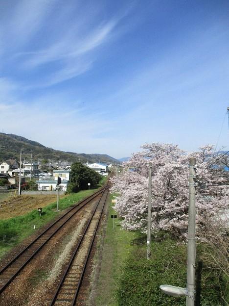 Photos: gaku_22