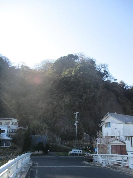 Photos: awakatsuyama_13