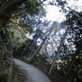 Photos: awakatsuyama_18