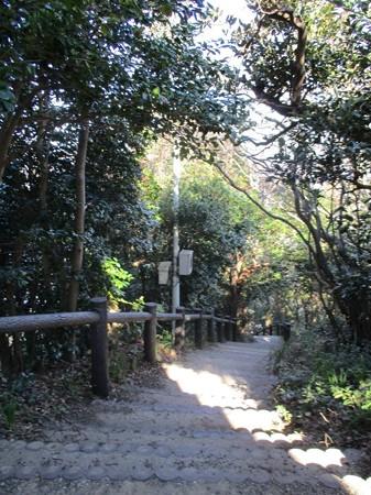 awakatsuyama_29