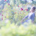 写真: バラとワタシ