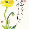 写真: チラシちぎり絵(ポピー) by ふうさん